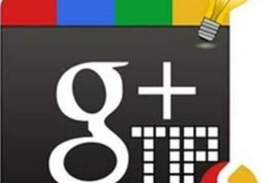 google+1 on 40 pages of your website