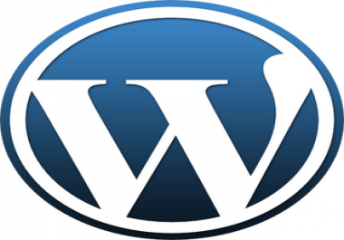 help you with your wordpress site