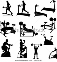 I will send you animated Gif pictures from every exercise for every part of your body