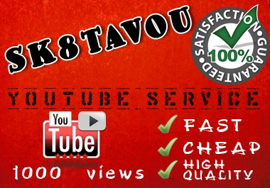 deliver 1000 views to your youtube video