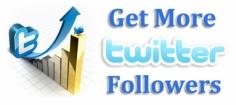 I will give you 300+ [Real] Twitter Followers , without password