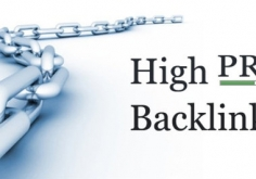 I will provide 120 High PR Lifetime Backlinks to your site homepage or inner page Url