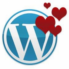 I will install WordPress onto your domain