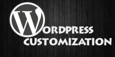 I will do wordpress customization