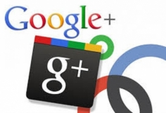 I will deliver 200++ Google plus Circles followers Real Human to seo rock up your high rank on go