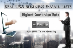 I will send Usa business email lists, more than 6 millions,HIGHEST conversion