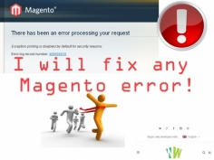 I will solve any Magento eCommerce error in your store