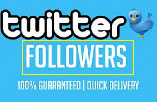 give you 1000+ HIGH QUALITY REAL LOOKING Twitter follower
