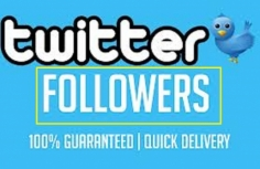 I will give you 4000+ HIGH QUALITY REAL LOOKING Twitter follower