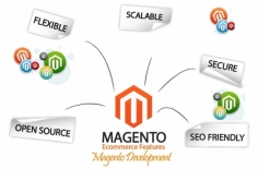 I will solve your magento eCommerce site problem