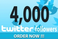 I will give you Real Non Drop 4000 twitter followes Instant 24hrs