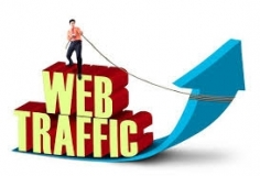 I will deliver 4002 visitors from United States to your website
