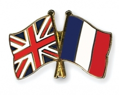 I will translate French/English your article up to 250 words
