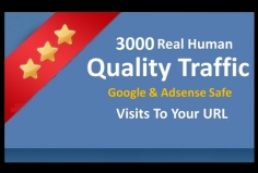 I will send 3000+ Adsense Safe Worldwide website visitors
