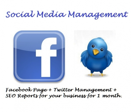 manage your Social Media for 1 month
