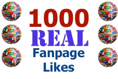 I will add 1000 Real Facebook Likes to your Page