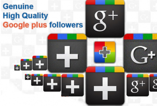 add REAL Genuine 250 Google Followers or Circles