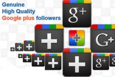 I will add REAL Genuine 250 Google Followers or Circles