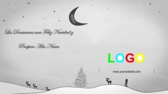 I will Create this Professional Christmas or New Year Video Greeting