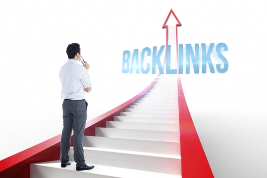 create Panda, Penguin and Hummingbird safe backlinks from 20 AUTHORITY Sites and 20 EDU Links