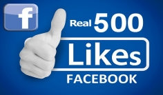I will Add 300+ Real FACEBOOK Likes