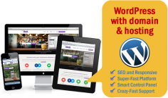 I will set up your new WordPress website + give you a Free Domain + 1 year Premium Hosting + SEO