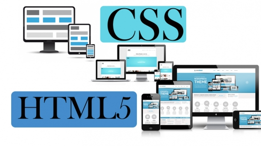 do any HTML5 and CSS fixes on any Website or WordPress