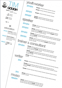 design and produce a high quality, professional CV / Resume