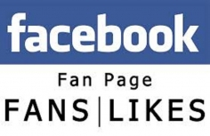 I will add 300+ High Quality PERMANENT FACEBOOK LIKES to your FAN PAGE within 5 days