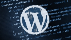 I will help you with your wordpress sites