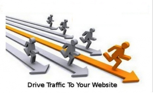 send you 2000+ visitors/traffic/hits to your website(adsense safe)