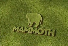 I will display your LOGO or signature on the lawn marvelously
