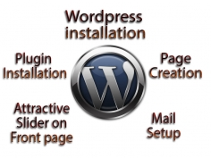 I will install and setup wordpress website