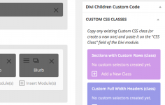 I will install Divi theme from Elegant Themes onto your Wordpress site