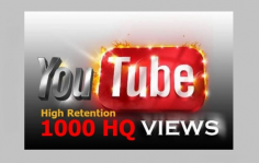 I will add 1000 SAFE HQ Retention YouTube video views guaranteed