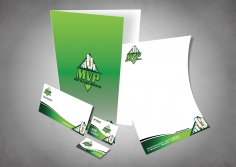 I will design a stationary pack for your business with 2 designs options