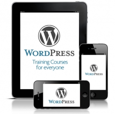 I will give you a Live Training Presentation for your Wordpress Website