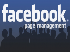 I will Manage your Facebook Page for 4 days