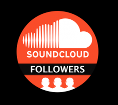 I will give you 100 Safe & HQ SoundCloud Followers