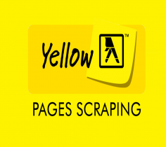 I will Scrape 1000 Business data from Yellow page in just 1 hour