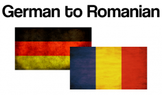 I will translate 750 words from German to Romanian or the other way around