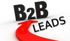 I will supply you b2b contact database including an email address