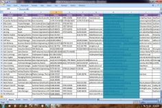 I will do business card contact info entities in excel or csv file