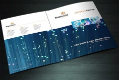 I will design a good looking brochure for your company