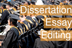 I will edit your University Dissertation, Paper or Essay