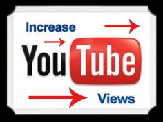 I will give you Real 2000 YouTube Views to Any Video