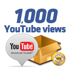 I will give 1000+ Safe YouTube views