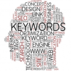 I will do premium long tail keyword, seo, ppc, google, search keywords research and analysis