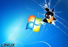I will clear My Customers simple Desktop issues both (Linux / Windows only) by providing the good