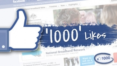 I will provide 1000 facebook fanpage likes Real likes only